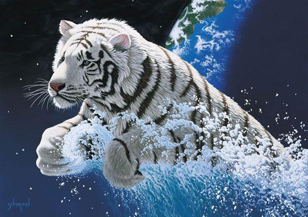 Animaux - Photo de tigre blanc a imprimer ...